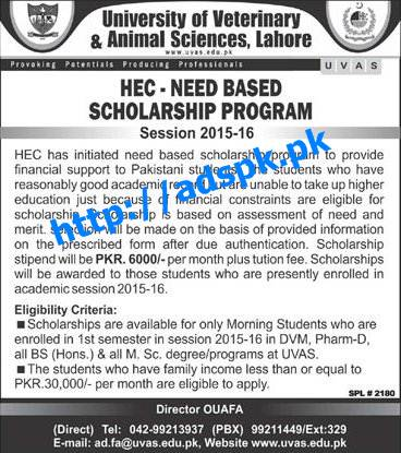 Isb need based scholarship essay sample