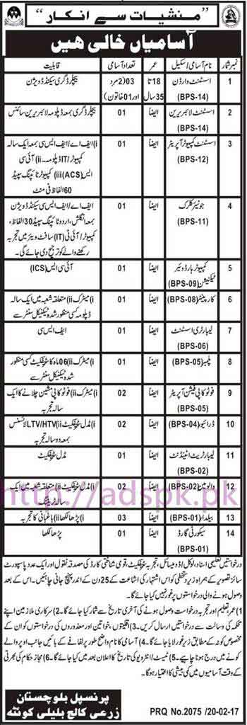 new career jobs agriculture college bulali quetta balochistan jobs for bps 01 to bps